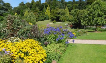 Killerton House and Gardens